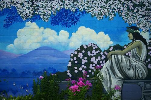 flowers blue ohio building digital painting mural sony fullframe dslr yellowsprings 287528 a850 alphamount sonya850 sal2875