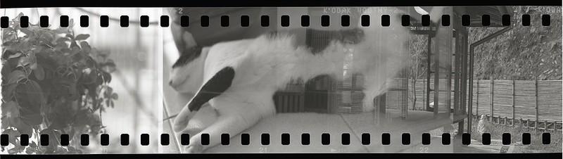 在菁桐的心靈休息-135底片用Pentax 6x7拍攝