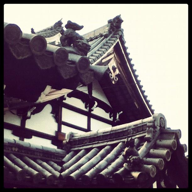 Temple roofs at Myoshinji.