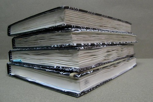 2012 Trip Sketchbooks by borromini bear