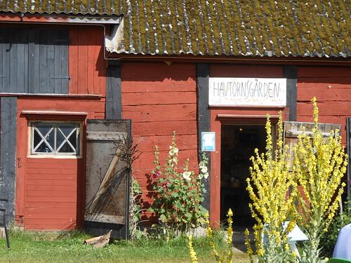 Havtornsgården