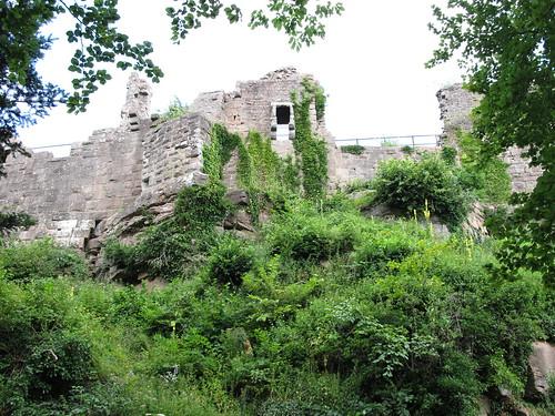 ruine du chateaux frankenbourg 032
