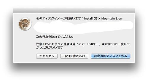 Lion DiskMaker 02