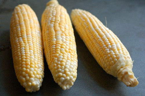 Sweet corn by Eve Fox, Garden of Eating blog, copyright 2012