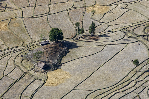 field asia view rice aerial soil unitednations land production southeast agriculture development unphoto timorleste baucau earthasia unmit