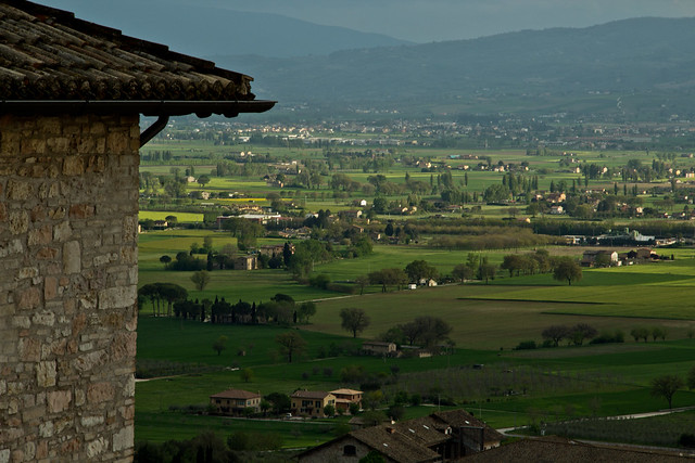 View from Assisi - Green Fields