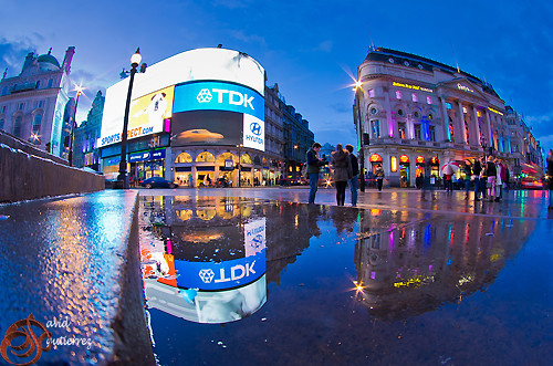 London Piccadilly Reflection
