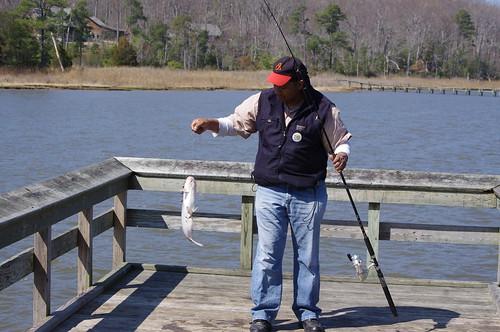 Virginia state parks peer friendly pier fishing for Saltwater pier fishing