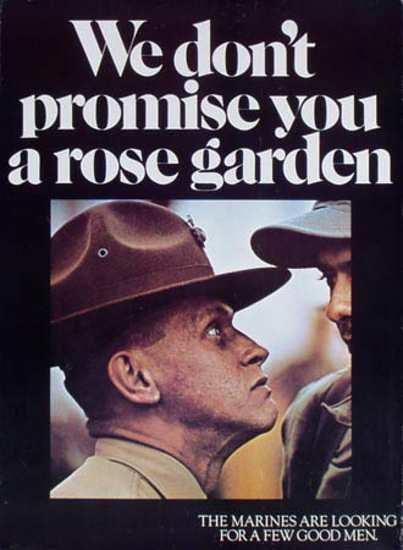 Rose Garden Flickr Photo Sharing