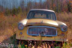 Old Cars at Brownies Custom Cycles-3500