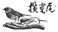 להחזיק את הצפור
