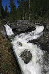 bear_creek_20120513_111