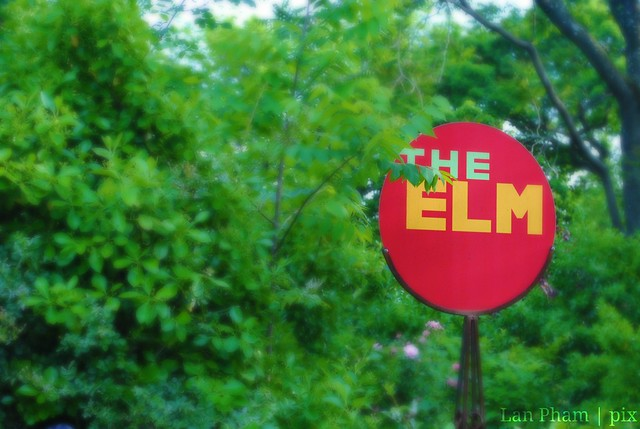 the elm sign