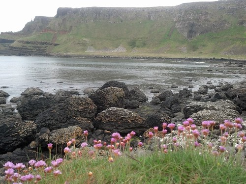 picnic at Giants causeway by candyhargett