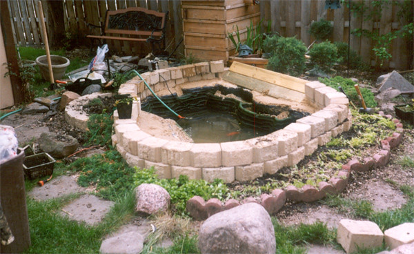 Small backyard pond construction flickr photo sharing for Small pond construction