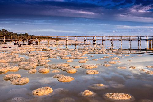Lake Clifton - Thrombolites by collectionselements