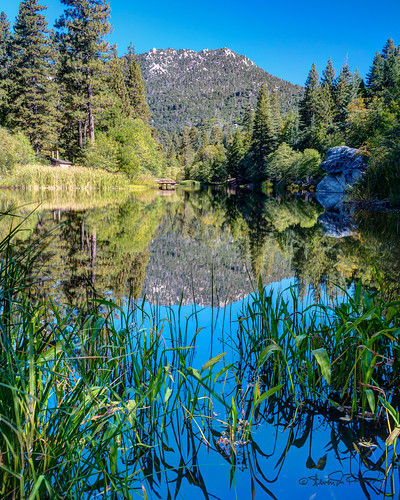 california trees mountain lake landscape unitedstates hemet idyllwild highdynamicrange lakefulmor sdosremedios size5x4 ©stevendosremedios