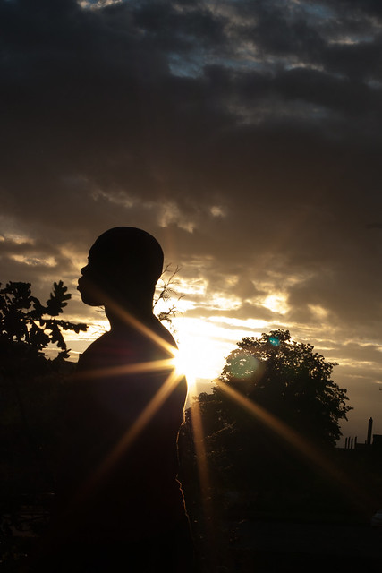 Shadows & Sunsets