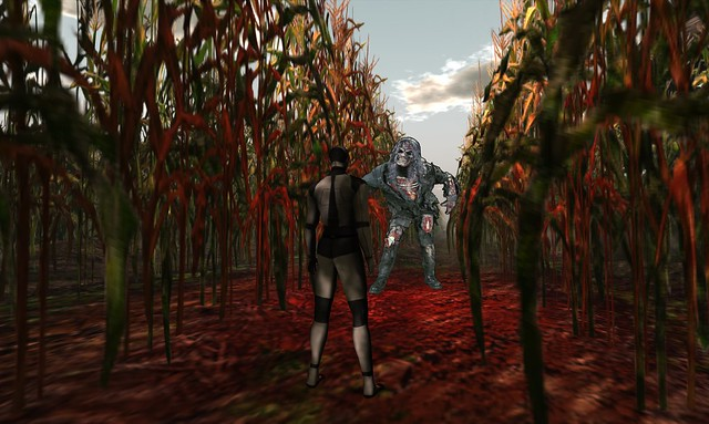 The Corn Field - 06