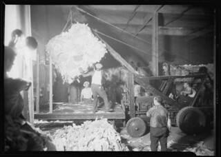 Longshoremen. Large bale being lifted by crane and directed by man on platform, July 1937