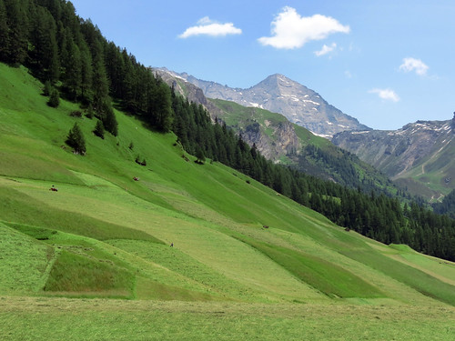 tirol österreich sommer wiesen himmel berge landschaft wald wipptal supershot colorphotoaward schmirn sailsevenseas elementsorganizer rememberthatmomentlevel1