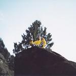 Sat, 05/11/2011 - 11:45 - Shifu Kanishka practising Zuo Chan Meditation