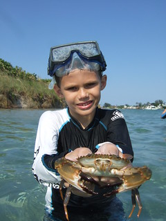 Sawyer catches a BIG swimming crab. | by AdventureMIke.com