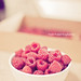 Dugualla Bay Farms Raspberries