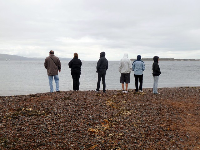 Dolphin Watching, Chanonry Point