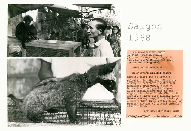 People & Faces During the Vietnam War (2) - PETS TO BE PURCHASED