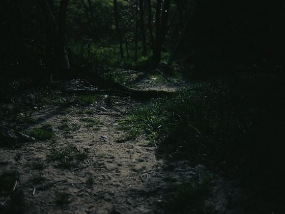 月の光で撮影した、風景写真集制作(写真家 :隼田大輔)_06