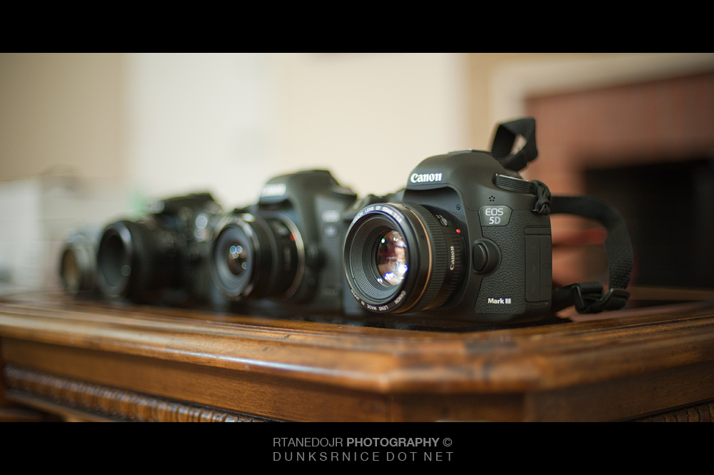 215 of 366 || Canon 5D MK III.