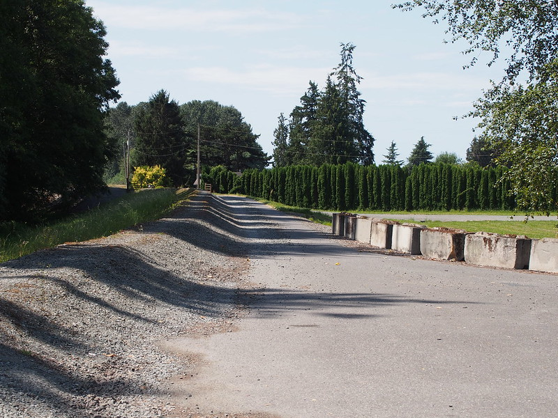 Behrens Millett Road: My directions unexpectedly led me to a dead end.  I had to turn back and take the main road instead.