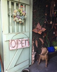 A darling shop in Ojai, CA . .