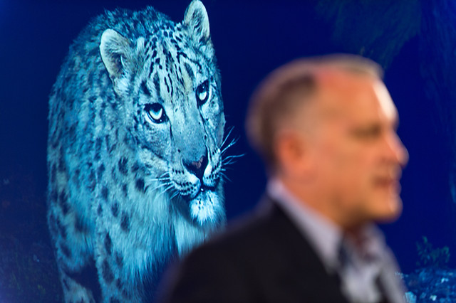 Alan Rabinowitz and a Big Cat