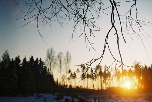 winter sunset snow tree film analog 35mm estonia bokeh branches zenit twigs eesti zenitet