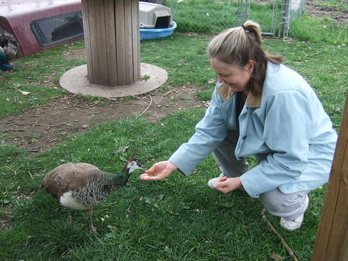 Me feeding Osirus