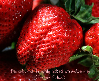 (cancerwords) strawberry fields forever... for glenn