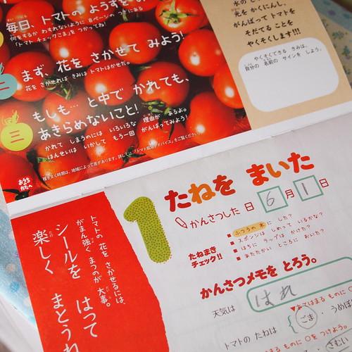 トマトブック 2012 チャレンジ2年生