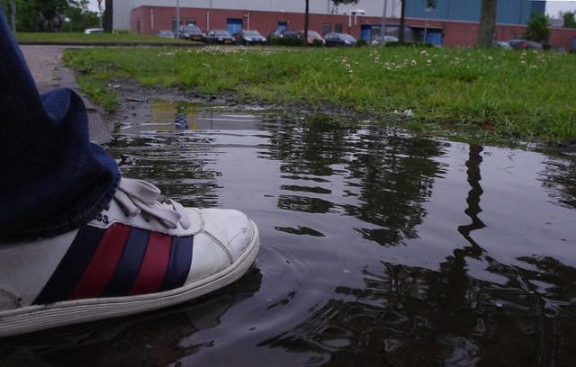 Rens zijn voet in het bange water copy