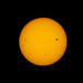 There's a little black spot on the sun today. Transit of Venus. Santee, California. by slworking2