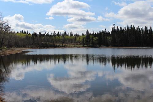 Sibbald Lake 025