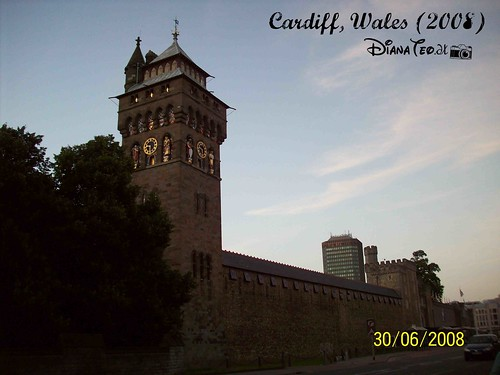 Cardiff City 07