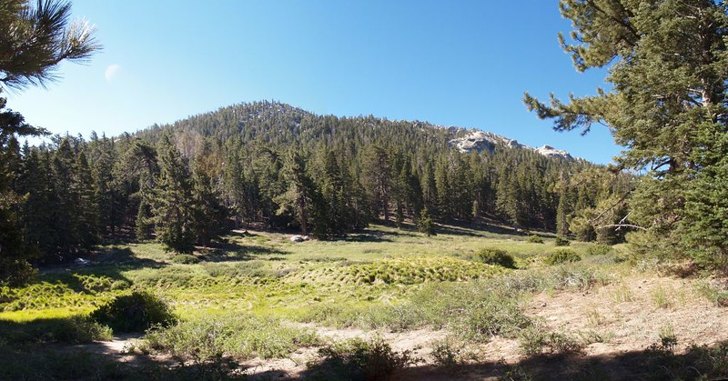Meadow in Little Tahquitz Valley
