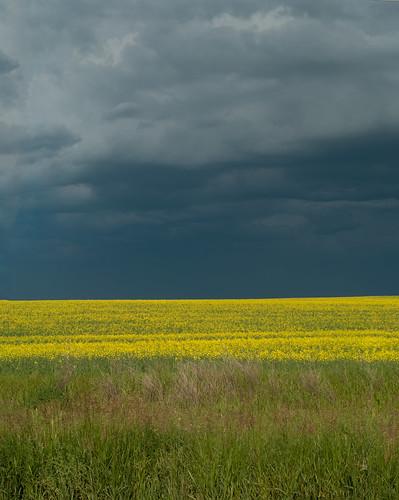canada storm clouds landscape geotagged pentax saskatchewan k20d pentaxk20d gmpentaxfan