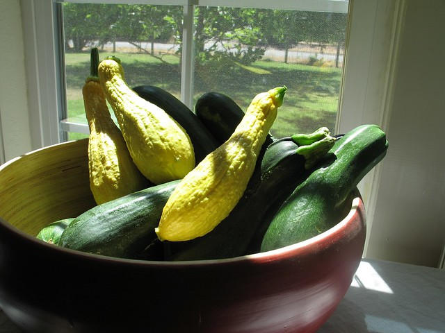 Zucchini and Yellow Crookneck Squash