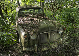 Rover P4 in the woods