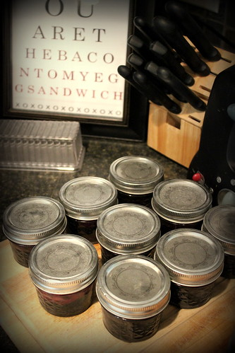 20120714. A little army of cinnamon blueberry jam.