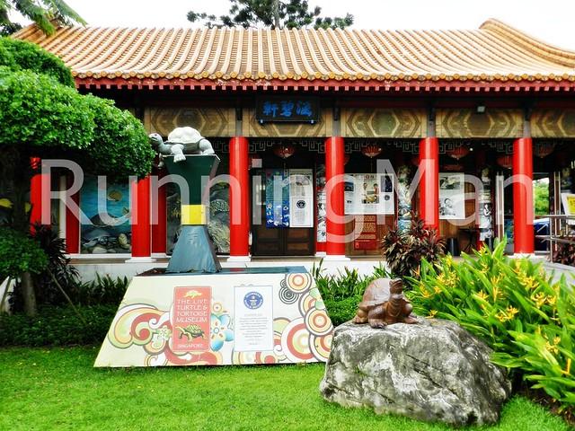 Chinese Garden & Japanese Garden 07