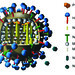 Illustation depicitng an influenza virus